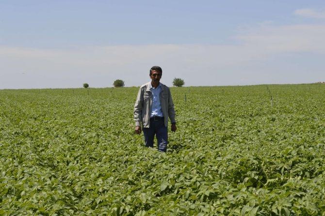 Bölge çiftçisi sıkıntılı galerisi resim 1