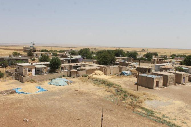 PKK'nın Xanikê Köyü zulmü! galerisi resim 11