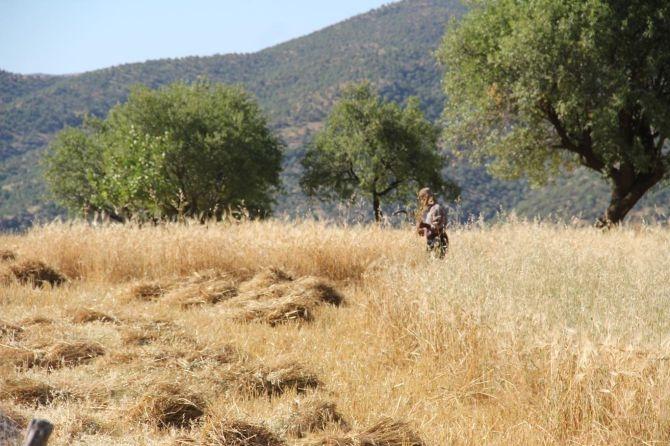 PKK'nın Gêra Cafer zulmü! galerisi resim 12