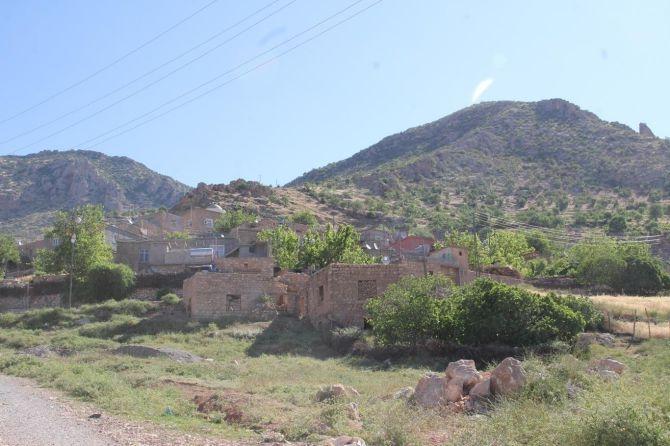 PKK'nın Gêra Cafer zulmü! galerisi resim 13