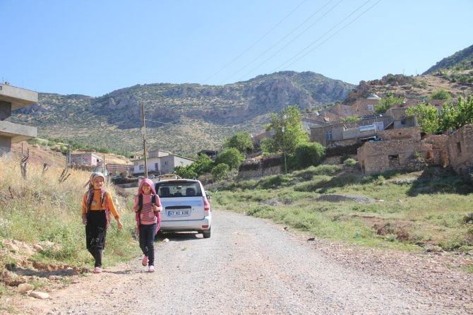 PKK'nın Gêra Cafer zulmü! galerisi resim 14