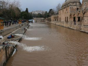 Balıklıgöl çamurlu göl oldu