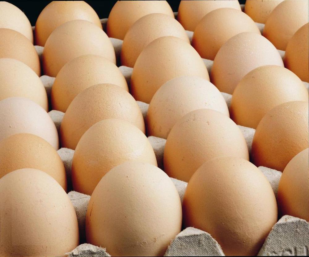 Yumurta, süt ve peynir alırken bunlara dikkat edin! galerisi resim 10