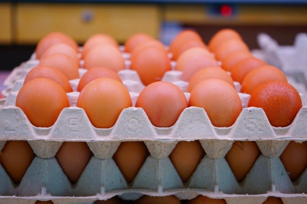 Yumurta, süt ve peynir alırken bunlara dikkat edin! galerisi resim 13