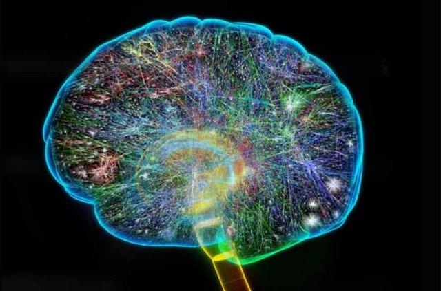 Hafıza pekiştirme ve endişe giderme testi galerisi resim 2