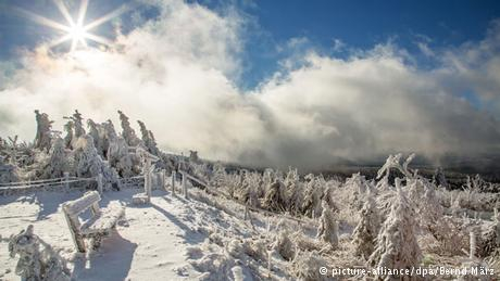 Kardan adam hakkında bilmediğiniz 5 gerçek galerisi resim 6