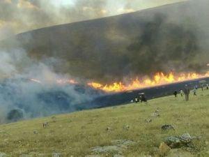 Binlerce dönüm ekin yandı