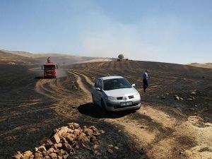 Yüzlerce dönüm ekili alan yanarak küle döndü