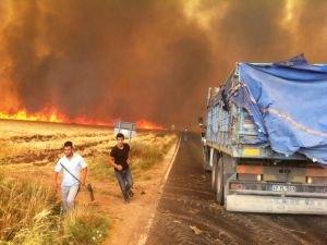 Anız yangınırüzgarın etkisiyle köyleri sardı