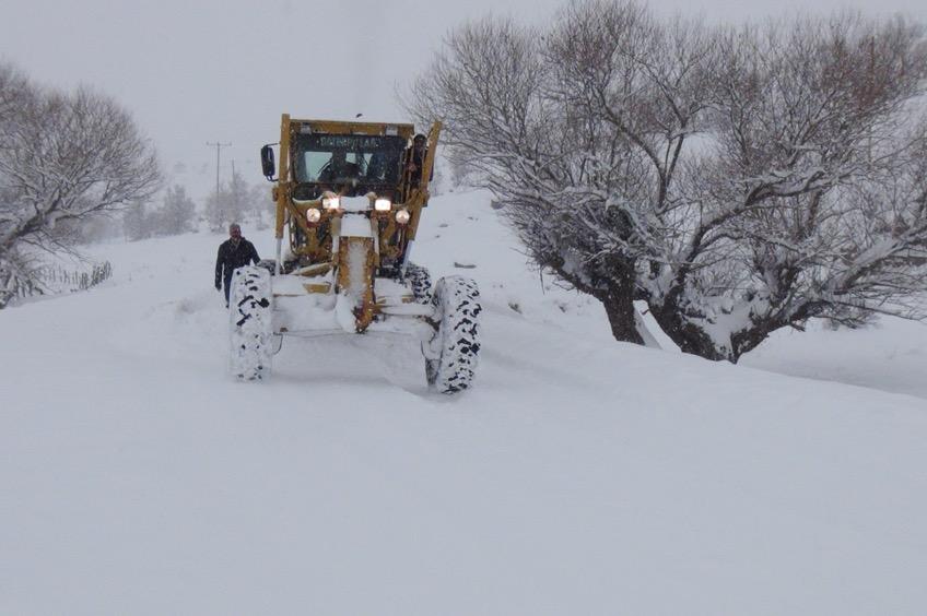 Bingöl'de etkili kar yağışı 184 yolu kapattı