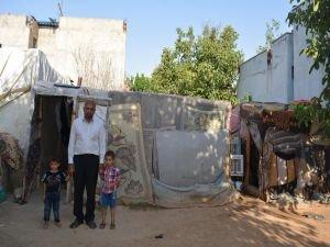 Barakada yaşayan Kobanili ailenin dramı yürek burktu