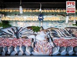 Haftada iki gün balık yaşam boyu sağlık