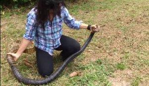 Cesaretin böylesi! Kadın 2 metrelik yılanı çıplak elleriyle yakaladı