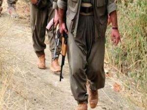 Erzurum'da 2 PKK'lı teslim oldu