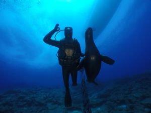 Mustafa Koç için su altında anıt!