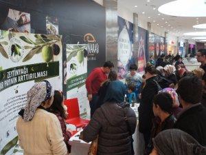 'Zeytinyağı Pazar Payının Arttırılması' Projesi devam ediyor