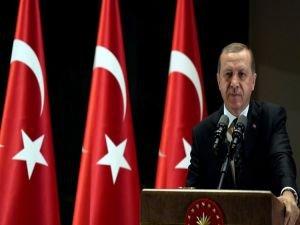 Cumhurbaşkanı Erdoğan: Bir millet ayağa kalkmıştır