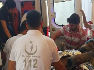 Kızıltepe'de yakılmış erkek cesedi bulundu