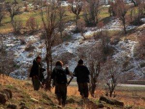 PKK'nın bölge sorumlusu yakalandı!