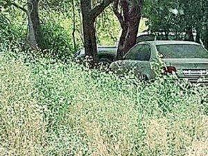 Cudi Dağı bombalı araçların park yeri