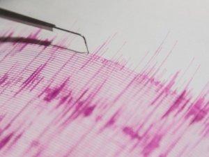Tanzanya'da depremde ölenlerin sayısı 17'ye çıktı