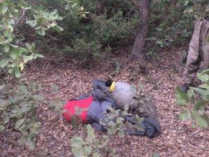 Siirt'te PKK'ya operasyon, 5 örgüt mensubu öldürüldü