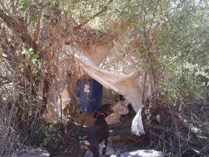 Bingöl'de uyuşturucu satıcılarına operasyon