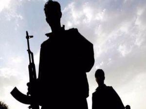 Tendürek Dağı'nda 2 PKK'lı öldürüldü