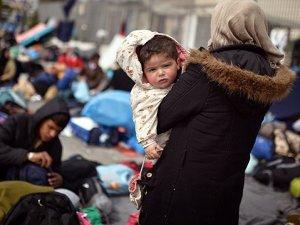 çeşme'de 40 sığınmacı yakalandı