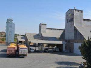 Batman'da 135 bin ton mısır alımı hedefleniyor!