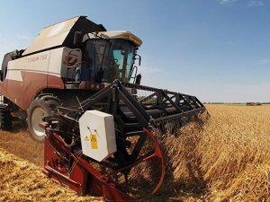 Rusya ve Türkiye tarım güvenliğini görüşecek