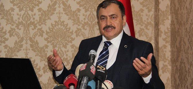 """Bakan Eroğlu: """"GAP'ı 2019 yılında tamamlayacağız"""""""