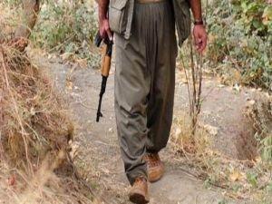 Siirt'te bir PKK'lı öldürüldü