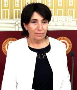 HDP'li Becerikli'den tehdit gibi sözler