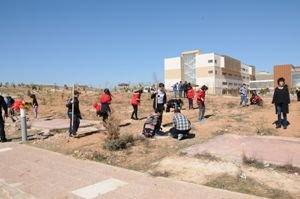 BTÜ Batı Raman Kampüsünde ortaokul öğrencileri fidan dikti