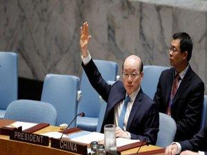 Çin'den BM Reformu Önerisi