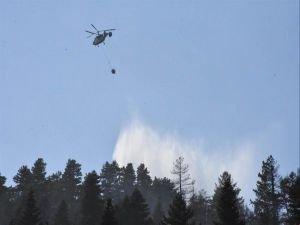 Aydos Ormanı'nda şüpheli yangınlar