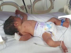 En çok bebek Şanlıurfa'da doğdu