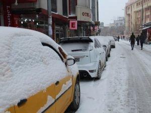 Van'da kar yağışı ve tipi etkili oldu