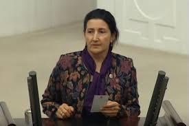 HDP'li Yıldırım'ın davası ertelendi
