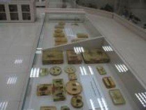 DÜ'de Zooloji Müzesi açıldı