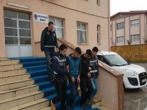 Siirt'te hırsızlıktan 3 kişi tutuklandı