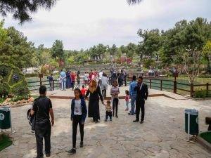 Lalelerle süslenen Dülük Tabiat Parkında bahar keyfi