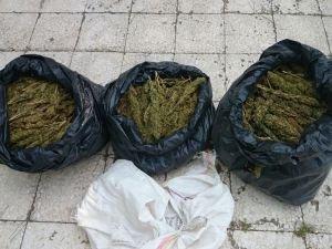 Diyarbakır'da 40 kilo esrar ele geçirildi