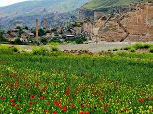 Antik kent Hasankeyf flora ile süslendi