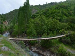Bitlis yaylalarında baharın güzelliği göz kamaştırıyor