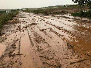 Dolu ve sağanak ekili arazilere zarar verdi