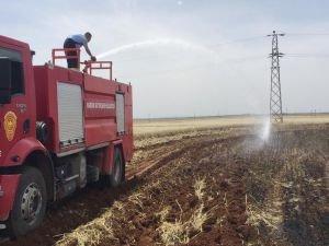 Yüksek gerilim hattından çıkan ateş buğday tarlasını kül etti
