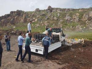 Diyarbakır'da bir ton 500 kilo balık imha edildi
