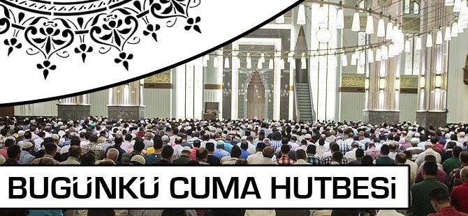 """Camilerde """"Selâm: İslâm'ın Güven Ve Barış Çağrısı"""" konusu işlenecek"""